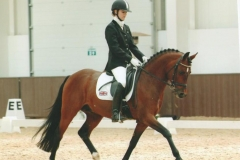 Addington CDI 2007